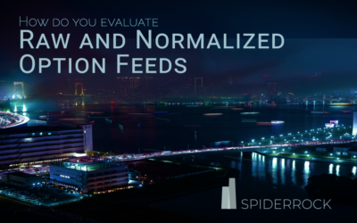 How Do You Evaluate Raw and Normalized Data Feeds?